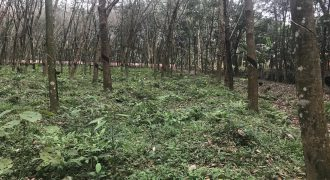 1.5 acres of land for sale at Puthukulangara
