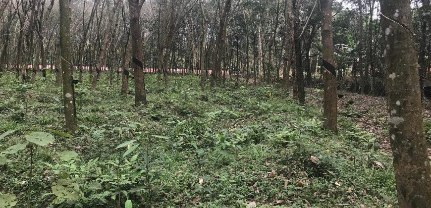 1.5 acres of land for sale at Puthukulangara